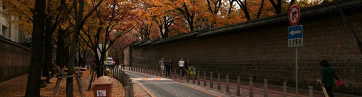 서울을 걷는다 (근현대 미술과 정동길)
