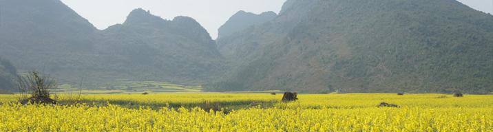 EBS 세계테마기행 출연 유별남 사진작가와 함께 하는, 중국 윈난성
