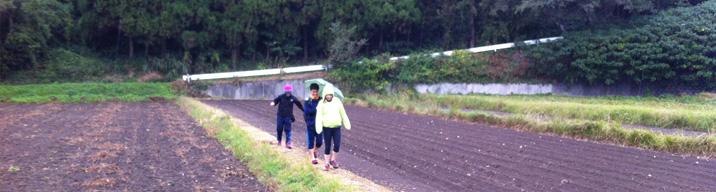 시간의 숲 야쿠시마 트래킹과 온천 휴식(2012. 11. 6 ~ 11. 10)